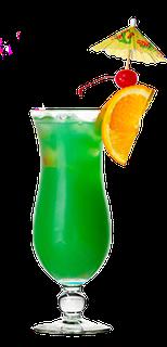 Green Mamba - www.urlaub-auf-curacao.net
