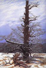 Caspar David Friedrich - Eichbaum im Schnee 1829