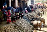 Markt in Bac Ha