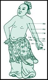 acupunctuur meridianen kaart