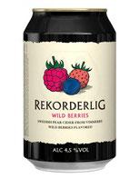 Cider aus Schweden, Apfelwein, Heidelbeeren, Himbeeren und Erdbeergeschmack