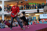 Tricky Dog Show mit Luki & Falco