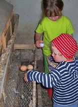 Eier stehlen