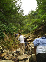 目的地までもう少し。あと200mほどは耳川の支流、「雲谷川」に下りて沢登りです。目の前に目印の巨石が見えています。昨年の台風18号の濁流で石ころだらけになっています