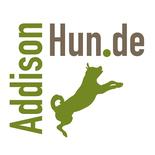Addisonhun.de, Information über Morbus Addison