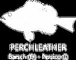 Fischleder Gürtel besondere Gürtel Schlangenledergürtel Markengürtel Accessoires Modelabel fisch Fischer fischen businessgürtel Lachs barsch Kabeljau Seewolf fishledergürtel Limited Edition