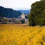 Village de Mailhac vue des vignes