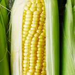 Is Corn a Grain, a Fruit, or a Vegetable? Here's What Nutritionists Say