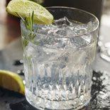 When You Drink Gin Every Night, This is What Happens to Your Body