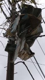 台風15号の爪痕 八街市 被害 停電