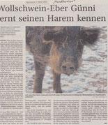 Nordkurier 07.03.2012