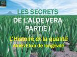 Les Secrets de l'aloé véra, partie I: L'histoire et la qualité