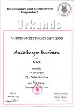 Vereinsturnier Agility für Fortgeschrittene am 1. Juni 2008 beim HSZV in Eugendorf