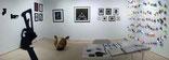 Miami Scope - NextArt Gallery