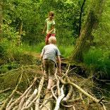 Naturverbindung von Kindern fördern