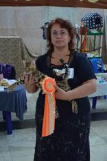 на выставке кошек в Коврове 7-8 сент.2013г. Заняли 8 место в Юниорах.