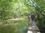 Sihanoukville Ream Nationalpark Day Tour
