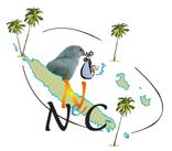 Logo Réseau Périnatal de Nouvelle-Calédonie - Naître en NC
