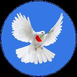 Offenes Friedensforum
