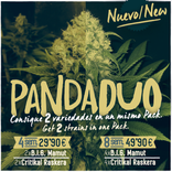 Panda DUO consigue 2 variedades BIG Seeds en un pack