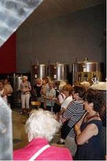 Interessierte Frauen im Weinkeller