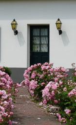 Bienvenue aux Mil Roses en Baie de Somme