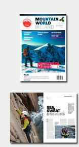 Freelance Magazine Article Writer