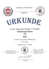 AG-Cup 2009 - 6. Turnier am 11. Okt. 2009 beim Hundesport und Zuchtverein in Eugendorf