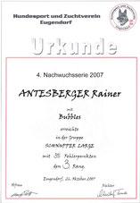 4. Agilitynachwuchsserie am 26. Okt. 2007 beim Hundesport und Zuchtverein in Eugendorf