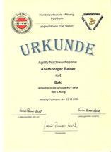 4. Agilitynachwuchsserie am 25. Okt. 2008 bei der Hundesportschule Attnang-Puchheim