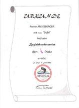 Turnier der Begleithunde am 11. Juni 2006  beim Verein Hundesport und Ausbildungszentrum Seenregion in Abersee