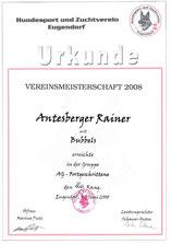 Vereinsturnier für Agility für Fortgeschirttene am 1. Juni 2008 beim Hundesport und Zuchtverein in Eugendorf