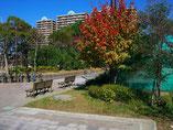 東京写真 新・秋色の街