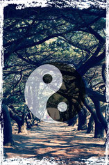 Marieeve Pöllinger Energetikerin Kinderenergetikerin Taoistische Übungen ein Leben in Balance Entspannung Happy Moments Selbstwertgefühl stärken Mentaltrainerin seelische Gleichgewicht
