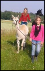 Das macht Spaß: Kindergeburtstage mit Lamas und Alpakas und natürlich mit euren Freunden - etwas ganz Besonderes!!