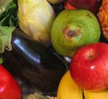 voedselganzenbord (1-2spelers)