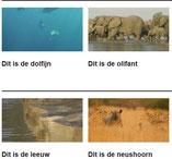 WWF : dierenfilmpjes