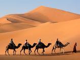 Bivouac dunes de merzouga