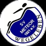 SV Meteor Wegeleben e.V. Freunde von Harzlift