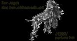 Jagdgebrauchshundverband