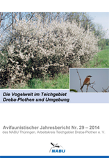 Jahresbericht Nr. 29 -2014