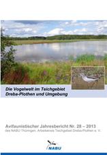 Jahresbericht Nr. 28 - 2013