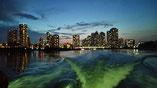 東京湾で!教習艇を使って操船のスキルアップができます!!