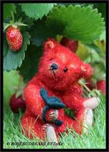Walderdbeere Bär
