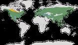 Karte zur Verbreitung der Familie der Kleiber (Sittidae)