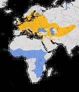 Karte zur Verbreitung des Teichrohrsängers (Acrocephalus scirpaceus)