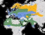 Karte zur Verbreitung des Raubwürgers (Lanius excubitor)