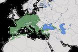 Karte zur Verbreitung des Waldbaumläufers (Certhia familiaris)