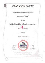 Agility-Kursabschlussturnier am 18. November 2006 beim Verein HSAZ Seenregion in Abersee