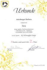 1. Turnier der Agilitynachwuchsserie 2008 am 25. Mai 2008 beim AHV in Werfen